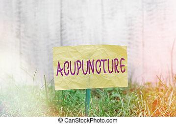 acupuncture., 含みなさい, 空, 草が茂った, integrative, 皮膚, 緑, 付けられる, スティック, ペーパー, 針, land., 執筆, 薬, 概念, システム, 置かれた, テキスト, 意味, 手書き, ちくりと刺す, 平野