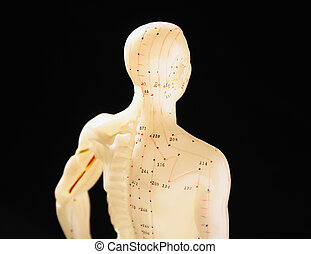 upper part of a figure used in Chinese medicine showing acupuncture points or meridians of the body against a black background