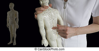 Cropped image of a female acupuncturist holding an acupuncture model pointing at a meridian on a black background with another full length muted model on the left hand side