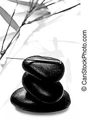 acupuncture naalden
