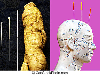 acupuncture needles, ginseng root and head model