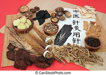 Acupuncture Needles used in Traditional Chinese Medicine