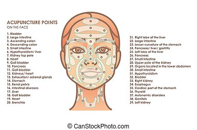 Acupuncture points on the face. Young woman face. Vector illustration