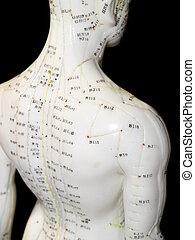 acupunctuur, concept