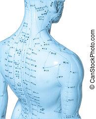 acupuntura, conceito