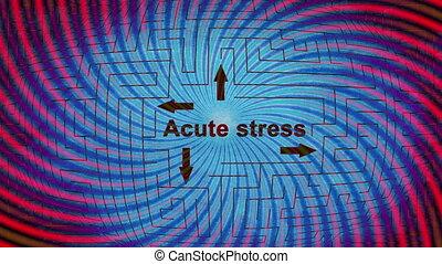Acute stress maze concept and dizzy spirals