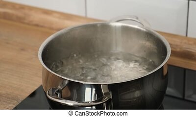 Add a salt to boiling water in pot on induction hob - hand...