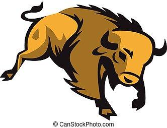 addebitare, bisonte americano, retro