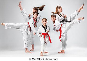 addestramento, bambini, colpo, arti, karate, marziale,...