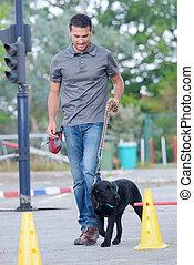 addestramento, cane, uomo