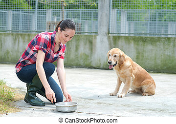 addestramento, canile, dedicato, ragazza, cane
