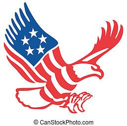 adelaar, amerikaan
