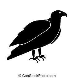 adelaar, black , pictogram