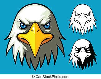 adelaar, hoofd, kaal