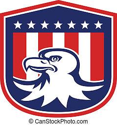 adelaar, hoofd, schild, kaal, amerikaanse vlag, retro
