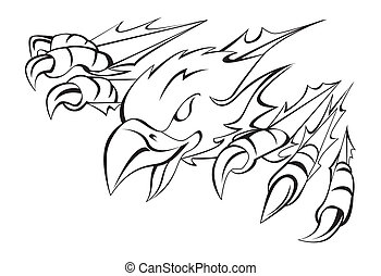 adelaar, klauw