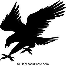 adelaar, vector