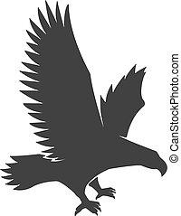 adelaar, vliegen, vrijstaand, illustratie, achtergrond., witte