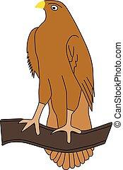 adelaar, witte achtergrond, vrijstaand, illustratie