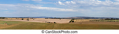 Adelaide hills panorama view with farm fields