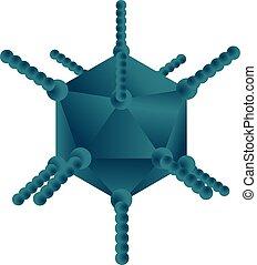 adenovirus, vector, ilustración