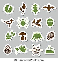 adesivi, foresta