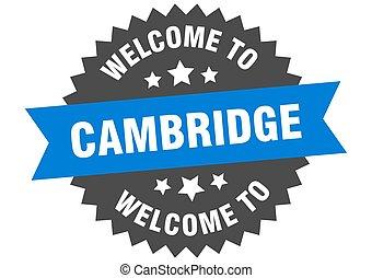 adesivo, cambridge, bem-vindo, sinal., azul