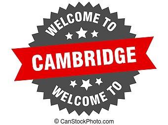 adesivo, cambridge, bem-vindo, sinal., vermelho