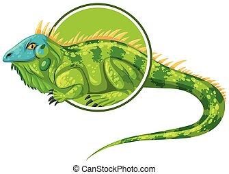 adesivo, personagem, modelo, iguanas