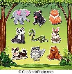 adesivo, set, animale