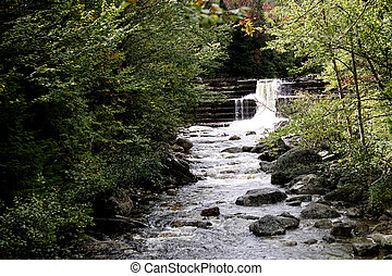 An Adirondack creek water fall cascading over rocks thru a lush forest green