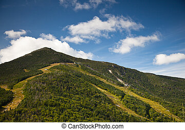 Adirondack Whiteface mountain forests trail  landscape