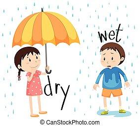 adjective, suchy, przeciwległy, mokry