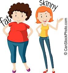 adjectives, flaco, grasa, contrario