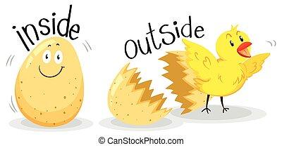 adjectives, gegenüber, draußen, innenseite