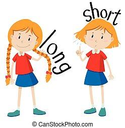 adjectives, shortinho, longo, oposta
