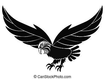 adler, isoliert, silhouette, weißes, vögel