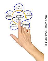 administration, kvalitet, system