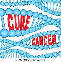 adn, câncer, pesquisa médica, cura, palavras, fios