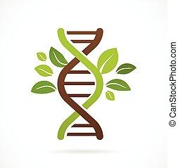 adn, genético, ícone, -, árvore, com, verde sai