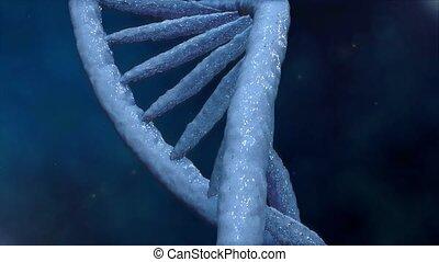 adn, scientifique, elements., concept., génétique, tourner, ...