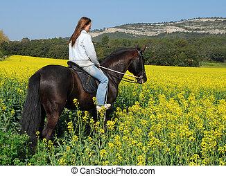 adolescent, cheval