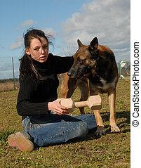 adolescent, chien, belge