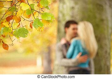 adolescent, romantique, arbre, couple, peu profond, parc, foyer, automne, vue