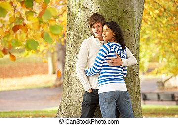 adolescent, romantique, parc, couple, arbre, automne