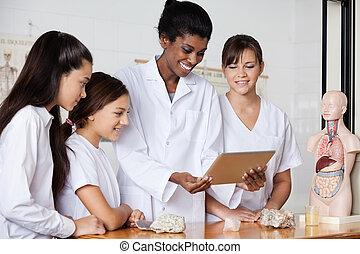 adolescent, tablette, bureau, filles, numérique, utilisation, prof