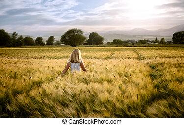 adolescente, ambulante, campo de trigo, por, niña, o