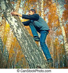 adolescente, escalar, ligado, a, árvore