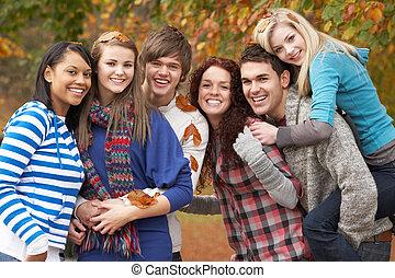 adolescente, gruppo, sei, parco, autunno, divertimento, amici, detenere