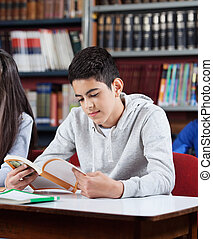 adolescente, libro, lettura, biblioteca, scolaro
